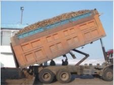 甜菜干法输送及除土、除草装窑系统